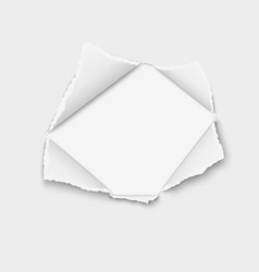 Snatched hole in paper with torn edges vector