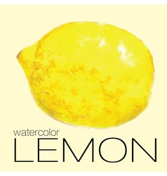 watercolor painting lemon vector image