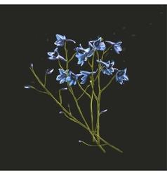 Romantic Wild Flowers Bunch on Dark vector image vector image