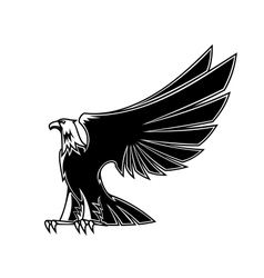 Powerful and majestic eagle vector image vector image