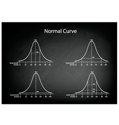 Normal Distribution Diagram on Green Chalkboard vector image
