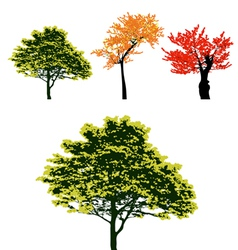 Set of real colorful autumn tree collection vector image vector image