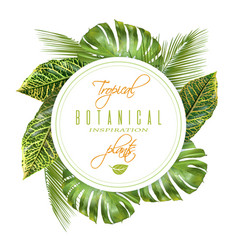 tropical round banner vector image