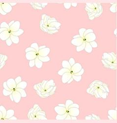 Arabian jasmine on light pink background vector