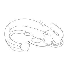 Catfish drawn one line minimalist vector