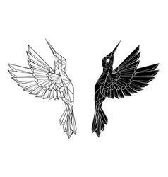 polygonal flying hummingbirds vector image