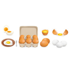 raw hard boiled fried chicken eggs vector image