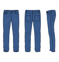 Mens jeans vector image