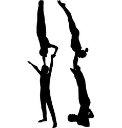 gymnasts acrobats vector image vector image