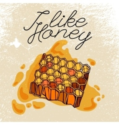 Beehive and honey vector image