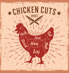 chicken cuts retro scheme for butcher shop vector image