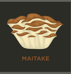 Maitake signorina edible mushroom isolated flat vector