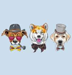 Set cartoon hipster dogs vector