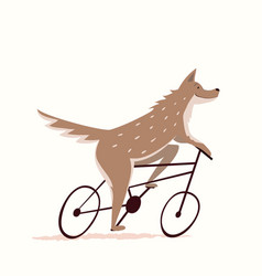 Wolf or wild dog cycling riding bicycle funny vector
