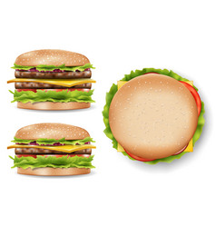 attractive burger for your design delicious vector image