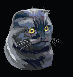Colorful cat 9 vector