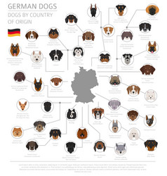 Dogs country origin german dog breeds vector
