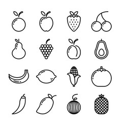 fruit icon set with outline style isolated on vector image