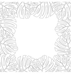 Philodendron monstera leaf border outline vector