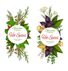 seasoning herbs and spices icons grocery store vector image
