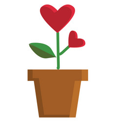 valentine flower heart shaped in a pot color on vector image