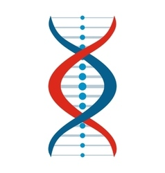 New DNA and molecule sign vector image vector image