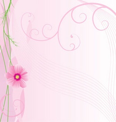vector illustration of cosmos flower vector image vector image