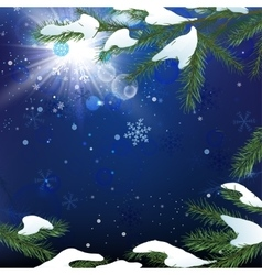 Christmas tree branch snow vector