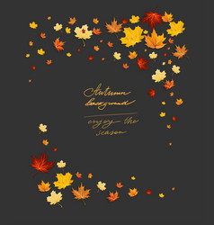 fall leaves on dark frame vector image