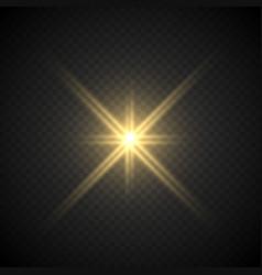 Lense flare light effect vector