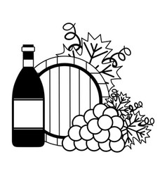 wine bottle grapes and barrel vector image