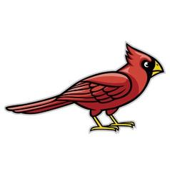 cardinal bird vector image vector image