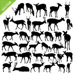 Deer silhouettes vector image vector image