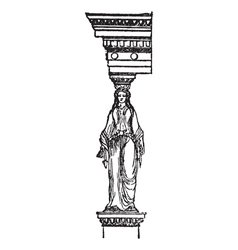 Cariatide vintage engraving vector image vector image