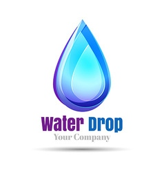 Water drop Logo design template Natural Mineral vector image vector image