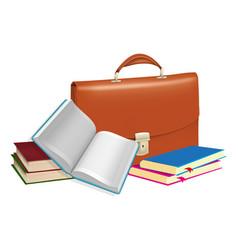briefcase vector image