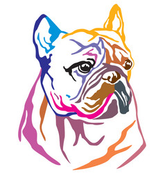colorful decorative portrait of dog french vector image