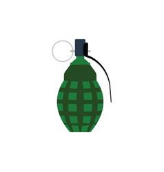 Defensive grenade icon vector