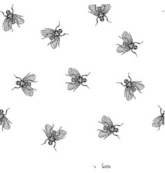 fly in chaos seamless white pattern vector image