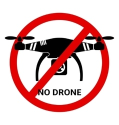 No drone icon vector image