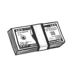pack dollars sketch vector image