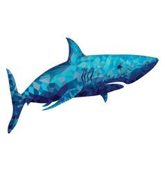 Polygonal shark vector