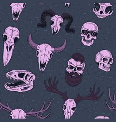 skulls boned head animals bull goat vector image