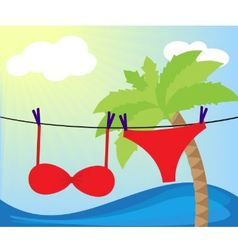 swimsuit dried vector image