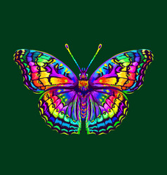 tropical butterfly abstract colorful hand-drawn vector image