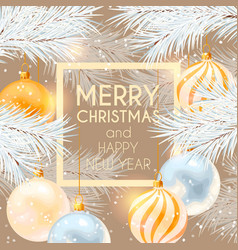 christmas design with white pine branch vector image