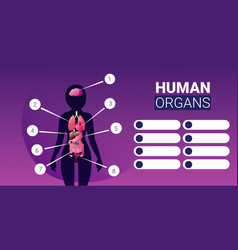 Human body structure infographic poster vector