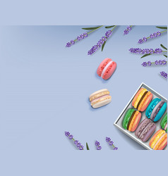 Macaroons set and lavender realistic 3d vector