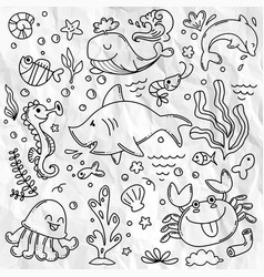 Marine life collection sketches for your design vector