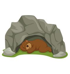 Of cartoon sleeping bear in ca vector